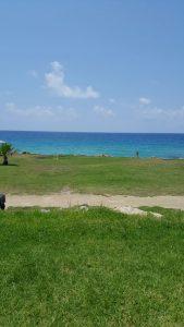 חוף פאפוס יוון